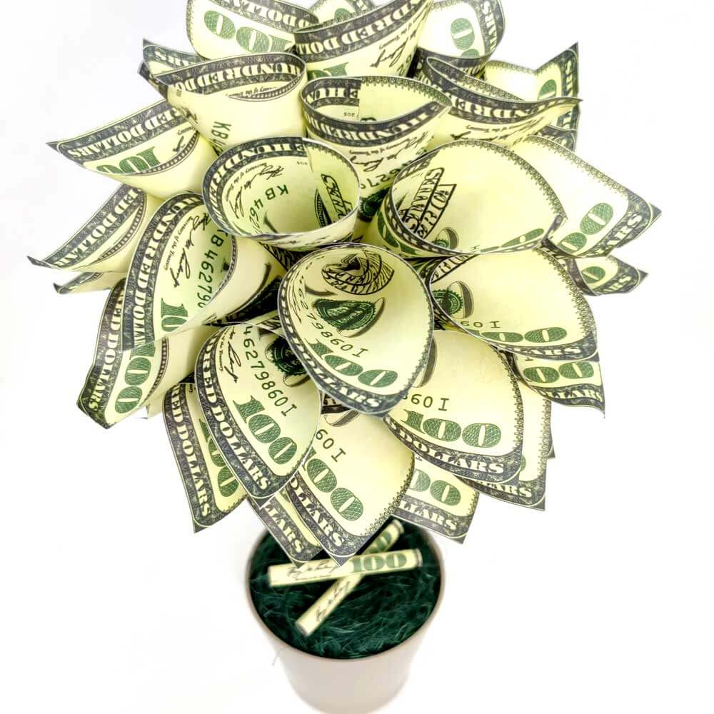face bani cu dolari