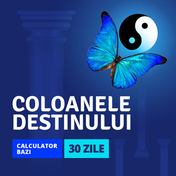 Ghid de interpretare, acces nelimitat 30 zile la calcul coloanele destinului, Calculator BaZi, cod Zodiacool