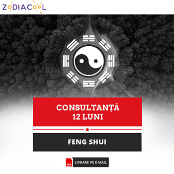 Feng Shui anual pentru 1 incapere si 1 persoana