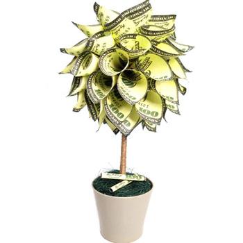Copac bani cu dolari, simbol pentru sporul casei, decoratiune cu ghiveci, 34 cm