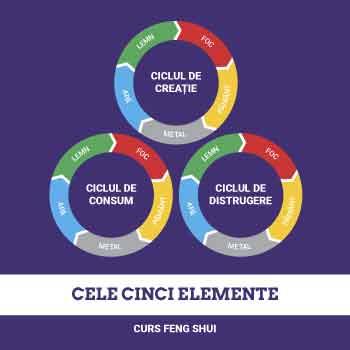Cele 5 elemente, curs feng shui, studiul ciclurilor de creatie, distrugere si control