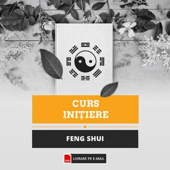 Curs de initiere in Feng Shui