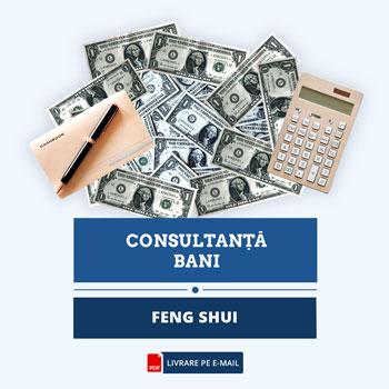 Feng Shui pentru Bani, studiu personal, cca 40 pagini, format electronic