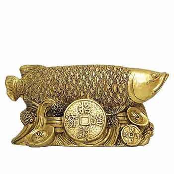 Crapul norocos cu moneda prosperitatii si pepite inscriptionate cu ideograme pentru bani, educatie si dezvoltare profesionala, 13.5 cm