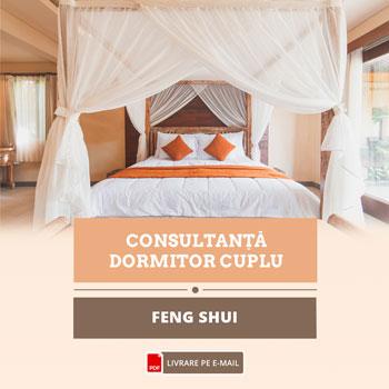 Feng Shui pentru relatia de cuplu, studiu personalizat pentru parteneri, cca 40 pagini, format electronic