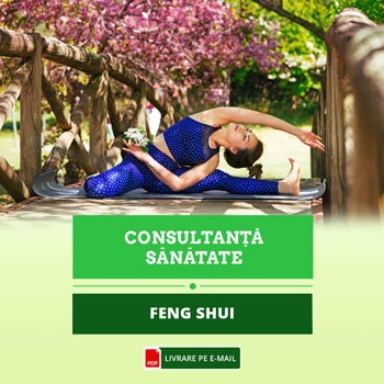 Feng Shui pentru o viata sanatoasa